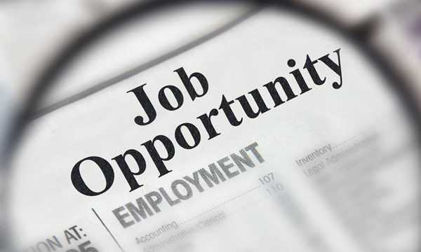Job Opportunity: Accountant and Human Resource – Town of Terry